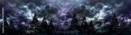 Mystery minimalism forest