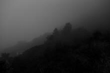 Fog In Salta