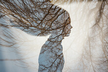 Double Exposure Of A Girl's Profile Silhouette With Tree Branches