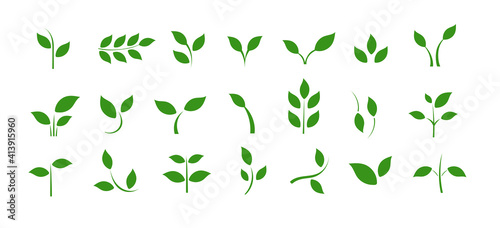 Obraz A set of icons with spring leaves. Spring. Green leaves on a separate background. - fototapety do salonu