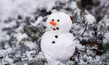 Small Snowman Sitting On Branches Of Evergreen Shrub On Winter's Day.