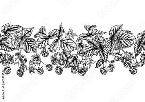 Fototapeta Raspberry or blackberry
