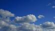青空の中流れてゆく白い雲