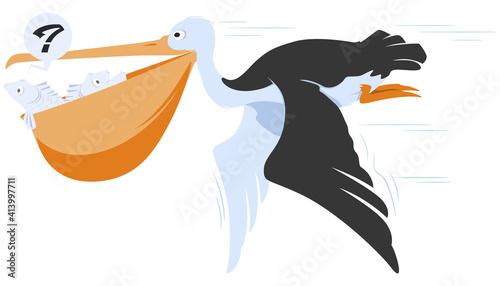 Obraz na płótnie Pelican with beak full fish