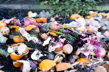 Natural Decomposition Of Food And Organic Waste