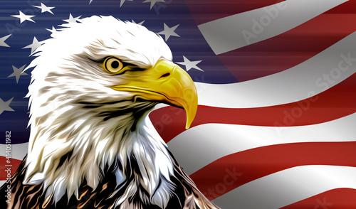 Fotografie, Obraz american eagle and flag