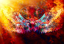 Merkaba And Wing On Abstract Color Background. Sacred Geometry.