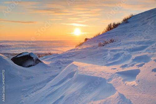 Fotografie, Obraz Winter arctic landscape