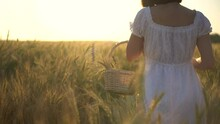 A Young Woman Is Walking On A Yellow Wheat Field With A Basket In Her Hands. Straw Basket With Spikelets Of Wheat. Close-up Rear View.