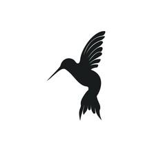 Silhouette Humming Bird Logo Design