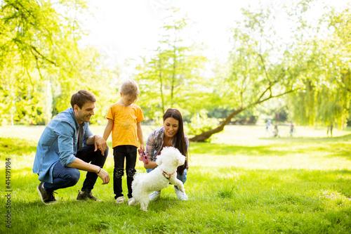 Fototapeta Beautiful happy family is having fun with bichon dog outdoors