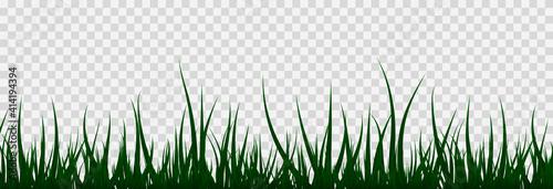 Fotografie, Obraz Grass, lawn, field