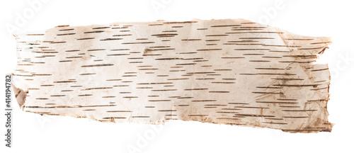 Obraz na plátne birch bark on a white isolated background