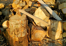 Heap Of Cut Logs For Firewood With An Ax In The Sunlight