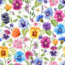 Beautiful Seamless Floral Pattern With Watercolor Gentle Colorful Summer Pansy Flowers. Stock Illustration.