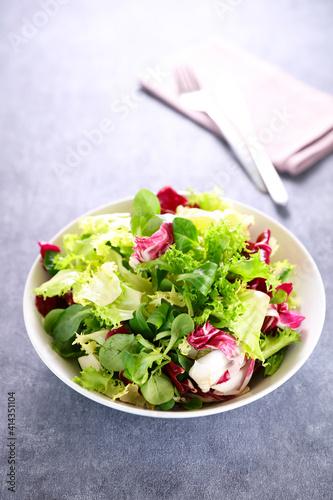 Fototapeta bowl of lettuce- mixed salad obraz