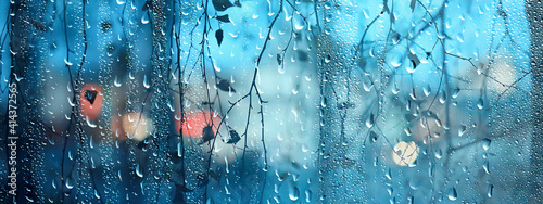 Obraz wet glass view of branches park autumn, abstract background drops on the window evening november - fototapety do salonu