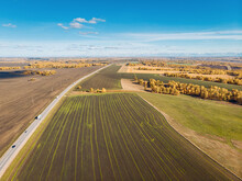 Drone View Of The Endless Beautiful Fields Of Cultivated Plowed Land With Planted Forests And Trees Extending Beyond The Horizon. Long Road Across The Field. Concept Of Seeds