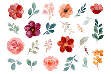 Collection Of Watercolor Floral Elements. Hand Drawn Burgundy, Brown And Rose Flowers And Green Leaves