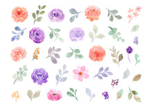 Collection Of Watercolor Floral Elements. Hand Drawn Roses, Pink And Purple Flowers And Green Leaves