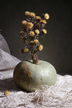 Still Life With Pumpkin And Dried Flowers. Dark Autumn Or Winter Composition With Pumpkin Indoor.