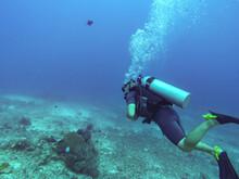 Plongeur Sous Marin Aux îles Gili, Indonésie