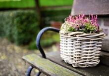 Erika Flowers In A Basket
