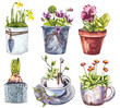 Leinwandbild Motiv Watercolor spring flowers in flower pot. Hand draw watercolor illustrations on white background. Easter collection.