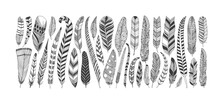 Hand Drawn Rustic Ethnic Decorative Feathers. Tribal Bird Feathers Collection. Vector Ink Illustration Isolated On White Background. Black And White Geometric Ornament, Graphic Design Element.