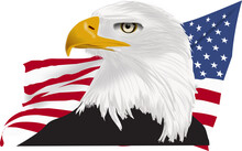 American Bald Eagle Drawing With Yellow Beak And American Flag Back Ground As A Vector Profile View