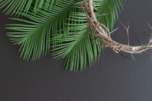 Crown Of Thorns And Green Palm Leaves