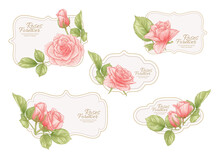 Set Of Labels, Stickers For Food Products Or Cosmetics In Engraving, Vintage, Old, Retro Shabby Chic Style.. Stock Vector Illustration.