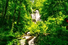 Scenic View Of The Amicalola Waterfalls, The Tallest Waterfalls In Georgia, USA