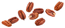 Pecan Nuts Isolated On White Background With Clipping Path
