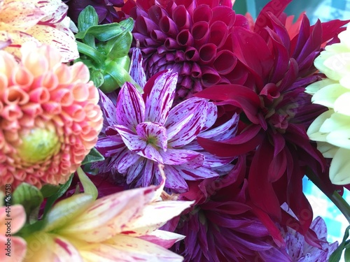 Billede på lærred bouquet of flowers flowerscape with dahlias and zinnias