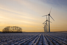 Dutch Rural Landscape With Windturbines And Fields Covered With Snow