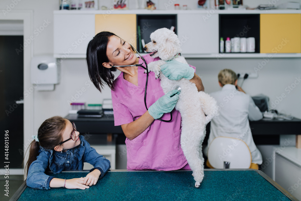 Fototapeta Cute girl with her dog at veterinary.