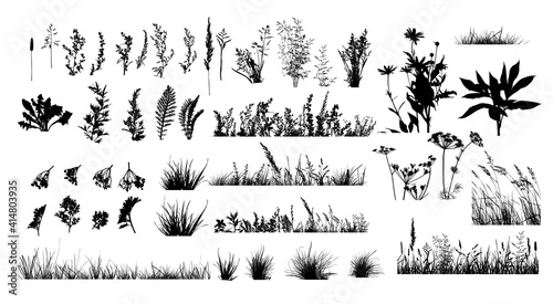 Photo The silhouette of the grass set. Vector illustration