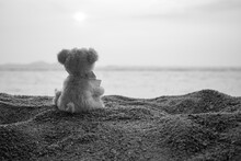 Broken Heart Or Loneliness Concept. Alone Teddy Bear Sitting On Sand Beach With Blue Sea. Symbol For Neglect, Sadness, Solitary, Disappointed. Black And Whit Image.