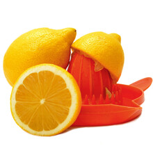 Closeup Shot Of Fresh Lemons And Plastic Citrus Juicer Tool Isolated On A White Backgr