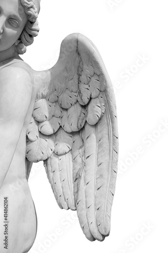 Foto Angel wings isolated on white background with copyspace