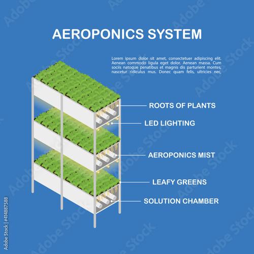 Fototapeta Diagram of the aeroponic setup for vertical cultivation. Isometric illustration, infographics. obraz