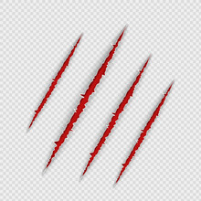 Claw Scratches Isolated On Transparent Background. Realistic Scary Danger Claw Marks, Symbol Of Monster Paw With Blood. Vector Illustration Of Red Torn Slashes Left By Tiger, Lion Or Bear