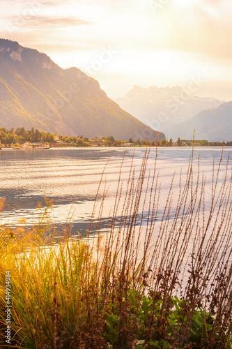 Fototapeta Flowers, Swiss Alps, lake, Montreux, Switzerland