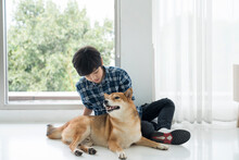 A Boy Is Playing With A Shiba Inu In A Bedroom In An Apartment.
