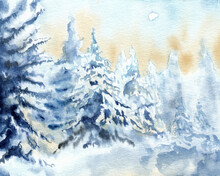 Winter Forest With Frurs In Snow. Handmade Watercolors And Coffee