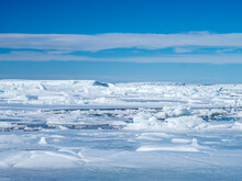 Sea Ice Hummocks And Floes In Erebus And Terror Gulf, Weddell Sea