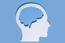 Close-up Of White Human Head And Brain Made With Paper On Blue Background
