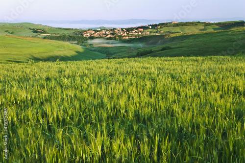 Fototapeta Italy, Pienza. Landscape with hilltop town.