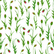 Vector Seamless Pattern :red And Pink Poppy Buds With Green Leaves On White. Floral Design For Textile, Wallpaper, Wrapping Paper, Notebook Cover, Card In Nice Vintage Style